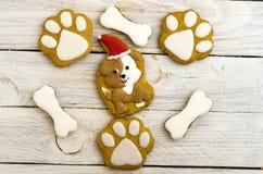Jul dog med ett rött lock En hund med en julhatt Royaltyfri Bild