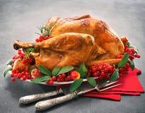 Jul- eller tacksägelsekalkon royaltyfri bild