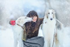 Jul går Härlig förvånad kvinna i vinterkläder med bakgrund för vinter för vinthundhundkapplöpning behagfull med snö, sinnesrörels arkivbild