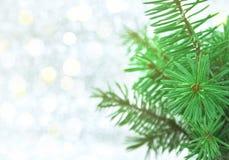Jul gör grön trädet på skinande bakgrund med kopieringsutrymme för tex Arkivbild