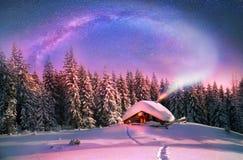 Jul i Carpathiansna Arkivfoton