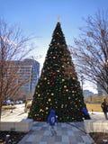 Jul i i stadens centrum Dallas: Klyden Warren Park i Dallas presenterar en stor julgran Royaltyfri Foto