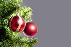 Jul klumpa ihop sig hängt på en julträdfilial med kopieringsutrymme på grå bakgrund royaltyfri bild