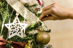 Jul klumpa ihop sig i hand klär upp nära övre för julgran Royaltyfri Bild