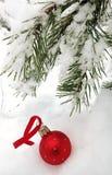 Jul leker med en filial av granen Arkivbild