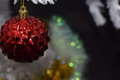 jul min version för portföljtreevektor Royaltyfri Foto
