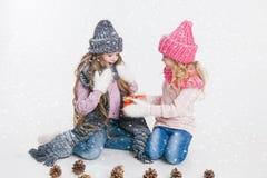 Jul nytt år Två lilla systrar som rymmer som är närvarande i vinterkläder Rosa och gråa hattar och halsdukar familj Vinter arkivbild
