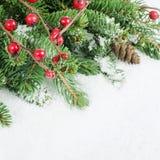 Jul och kant för nytt år Royaltyfri Bild