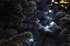 Jul och trädfilialer för nytt år med snö och girlanden royaltyfria bilder
