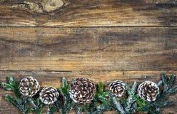 Jul sörjer kottar och granfilialgarneringar Royaltyfri Bild