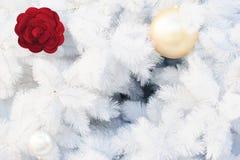 Jul semestrar vit bakgrund för utrymmetext arkivfoto