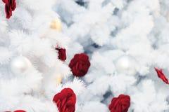 Jul semestrar vit bakgrund för utrymmetext royaltyfri fotografi