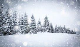 julbakgrund av det snöig vinterlandskapet arkivfoto