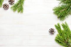 Julbakgrund, gräsplan sörjer filialer, kottar som dekoreras med snö på den vita trätabellen Idérik sammansättning med gränsen och fotografering för bildbyråer