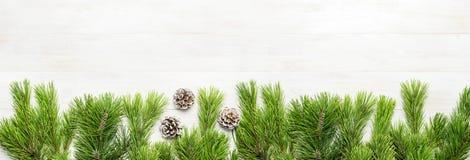 Julbakgrund, gräsplan sörjer filialer, kottar som dekoreras med snö på den vita trätabellen Idérik sammansättning med gränsen och arkivbilder