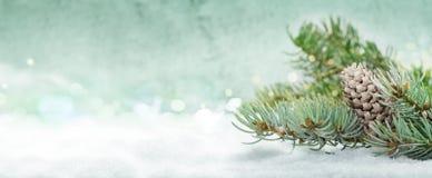 Julbakgrund, granträd med kottar i snön royaltyfri bild