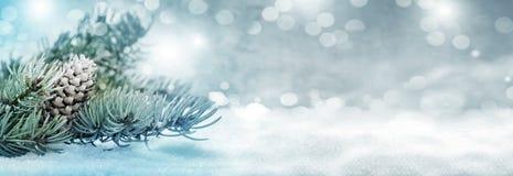 Julbakgrund, granträd med kottar i snön arkivbild