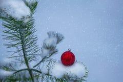 Julbakgrund med den röda bollen för Xmas Royaltyfri Fotografi
