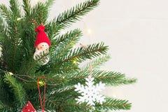 Julbakgrund med gran-träd filialer royaltyfria foton