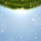 Julbakgrund med granfilialer Arkivbilder