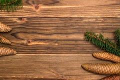 Julbakgrund med granfilialer och kottar Arkivbilder