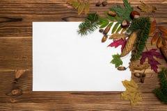 Julbakgrund med granfilialer och kottar Royaltyfri Foto