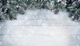 Julbakgrund med granfilialer och kottar med snö fl Royaltyfria Foton