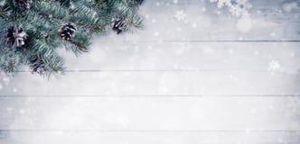 Julbakgrund med granfilialer och kottar med snö fl Arkivfoto