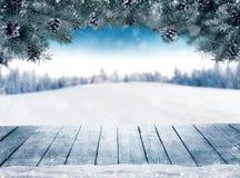 Julbakgrund med granfilialer och kottar med snö fl Royaltyfri Foto