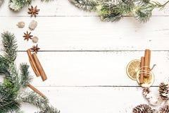 Julbakgrund med granfilialer, sörjer kottar, kanelsti Royaltyfri Fotografi