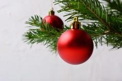 Julbakgrund med julgranfilialen och den röda prydnaden Royaltyfria Foton