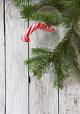 Julbakgrund med klubbarottingen Royaltyfri Fotografi