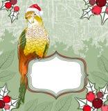 Julbakgrund med papegojan stock illustrationer