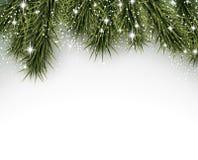 Julbakgrund med prydliga filialer Arkivfoton