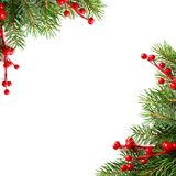 Julbakgrund med röda Holly Berries fotografering för bildbyråer