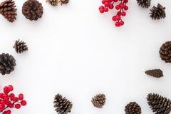 Julbakgrund med sörjer kottar och järnekbäret på vit bakgrund Fotografering för Bildbyråer