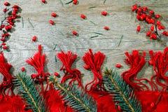 Julbakgrund med xmas-trädet på röd kanfasbakgrund Glad julkort Tema för vinterferie lyckligt nytt år royaltyfri fotografi