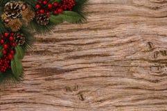 Julbakgrundsetiketten sörjer röda bär för kottar Royaltyfri Fotografi