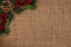 Julbakgrundsetiketten sörjer röda bär för kottar Arkivbild