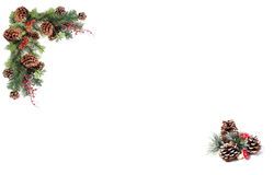 Julbakgrundsetiketten sörjer röda bär för kottar och som stiger ombord av den festliga girlanden Royaltyfri Bild