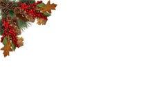 Julbakgrundsetiketten sörjer röda bär för kottar och som stiger ombord av den festliga girlanden Arkivfoto