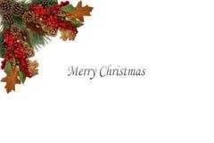 Julbakgrundsetiketten sörjer röda bär för kottar och som stiger ombord av den festliga girlanden Royaltyfria Bilder
