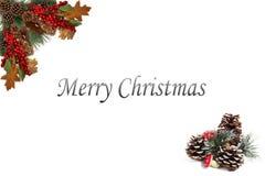 Julbakgrundsetiketten sörjer röda bär för kottar och som stiger ombord av den festliga girlanden Royaltyfri Foto