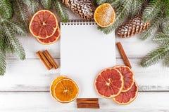 Julbaner med det gröna trädet, kottar, handgjorda filtgarneringar, apelsinen och kanel på vit träbakgrund Töm utrymme fo Arkivbild