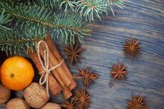 Julbegrepp med den kryddamuttrar och mandarinen royaltyfri bild