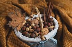 Julbegreppskorgen med blandade blandade tokiga jordnötmandelhasselnötter sörjer för gul höst för begrepp filtslags tvåsittssoffa  royaltyfria bilder