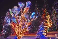 Julberättelse i Kroatien Arkivfoto