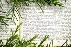 Julberättelse, med grönska Arkivbilder