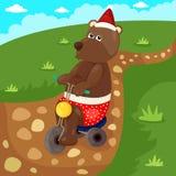 Julbjörn som rider cykeln Arkivbilder