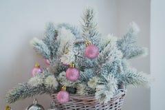 Julbranchs med bollar Royaltyfria Bilder